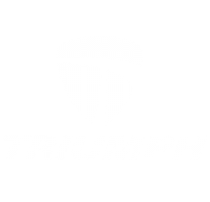 triumph-logo-400x384